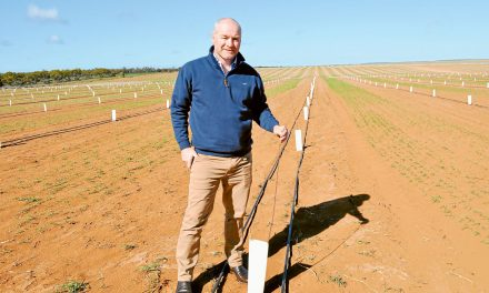 Almond expansion is a bloomin' success story