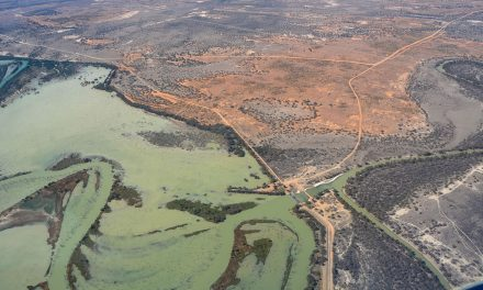 Less water to be released from Menindee Lakes
