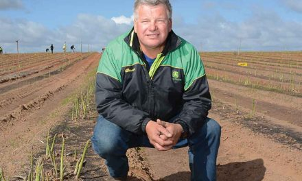 Darren's despair – Harvest worker penalty rates threatening horticulture viability