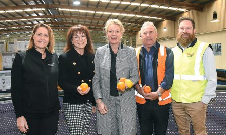 Money on the table to keep citrus canker at bay