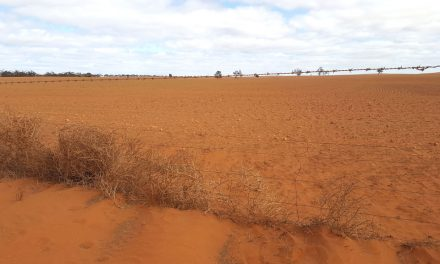 Welcome drought relief for Mallee communities