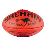 Draft report and recommendations for football and netball revealed