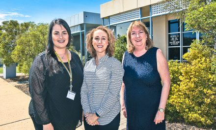 Minister puts family violence in the spotlight