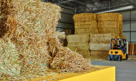 Hay processing giant eyes off Ouyen