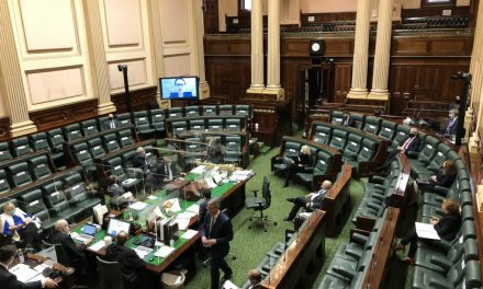 Mildura MP raises cancer care in video link Question Time