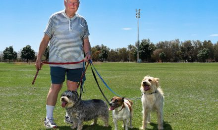 Dog park wait irks Red Cliffs residents