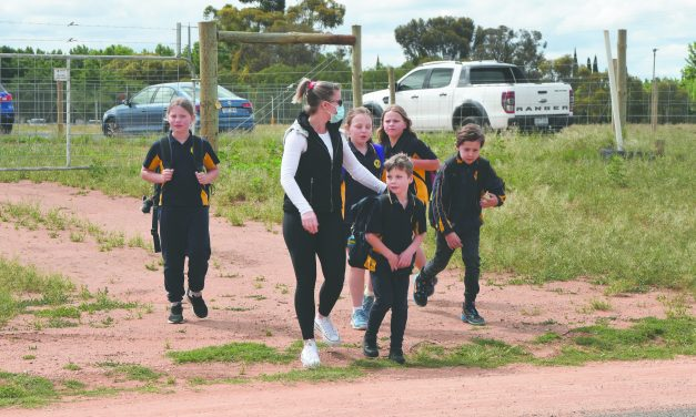 Student safety concerns at The Lake Primary School
