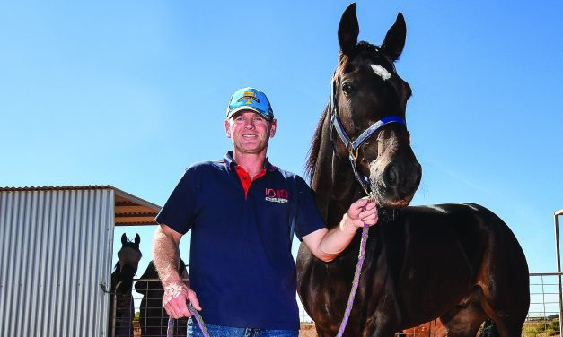 Harness industry thankful to continue
