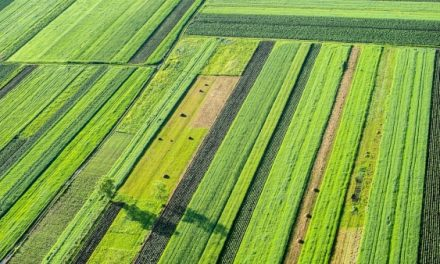 Ag sector gets helping hand