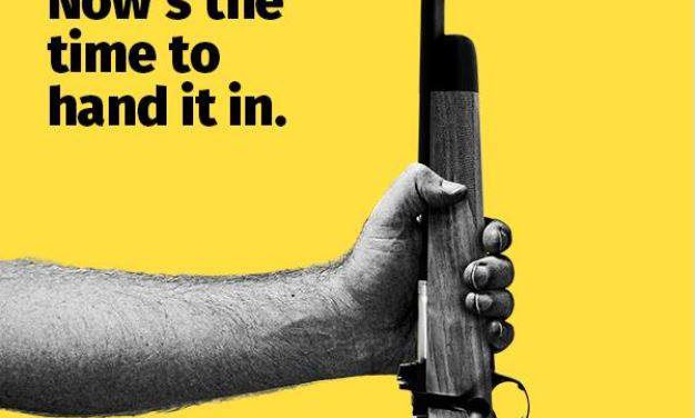Amnesty month for illegal guns