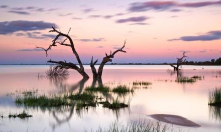 Extra water flows from Menindee suspended