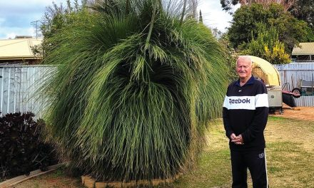 Ray's no green thumb but he's grown a ripper!